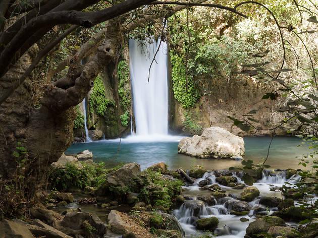 réserve naturelle de Banias